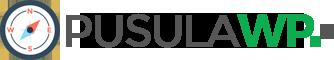 Safir Pusula Kurumsal WordPress Teması
